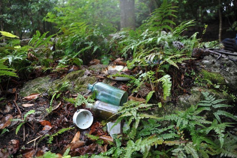 basura bosque suciedad