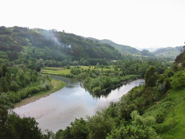 El río Narcea en su confluencia con el Nalón.