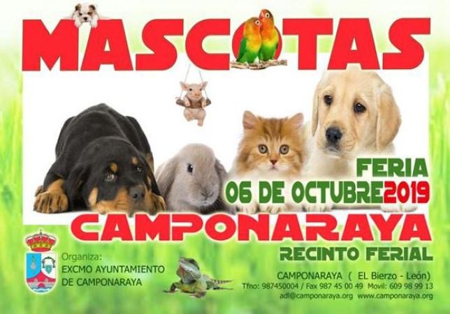 feria de mascotas en Camponaraya