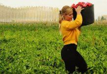 Lydia Valentin campaña fitur recogiendo pimientos