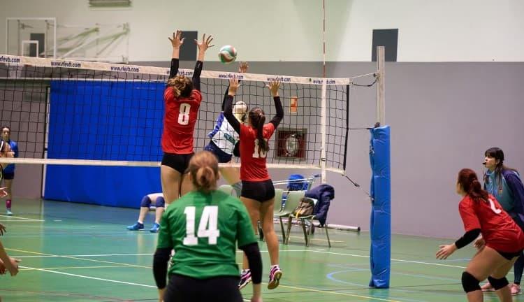 Voleibol Aule