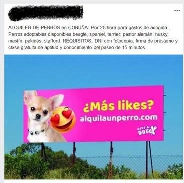 Denunciado por el SEPRONA por alquilar sus perros en estado de alarma
