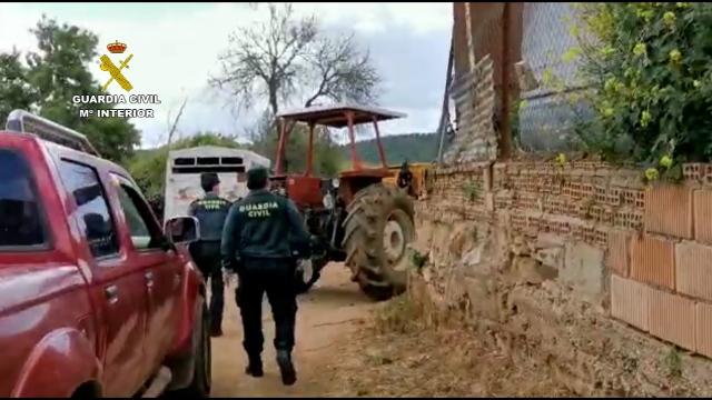 Se reúnen para la matanza del cerdo incumpliendo el Estado de Alarma
