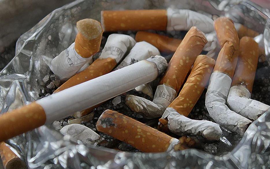 Nicotina protege covid 19
