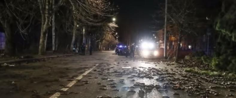 VÍDEO| Miles de pájaros muertos caen desde el cielo en España