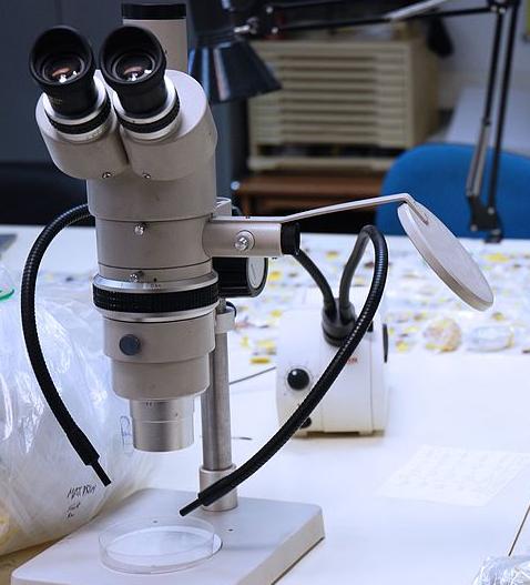 El robot antiCovid-19 que traen unos amigos a España