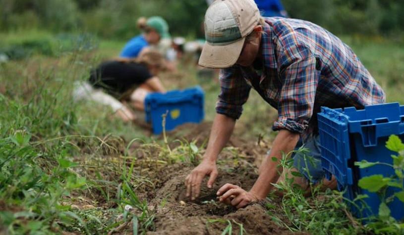 La agricultura a pequeña escala sigue esperando respuestas