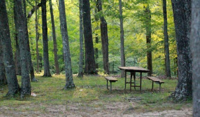 picnic reserva natural