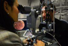 Una fotografía de la retina puede detectar la diabetes