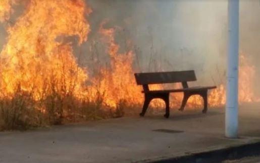 Un incendio arrasa 2.500 metros cuadrados de superficie forestal