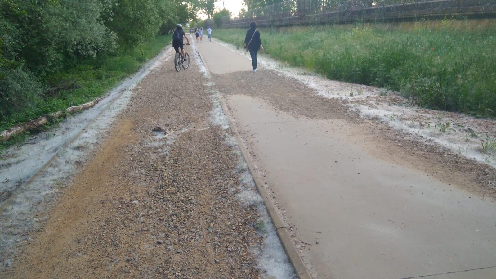 Reclaman al PSOE el arreglo de las sendas peatonales y carril bici del río