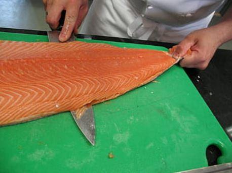 Un salmón el posible causante del rebrote de Covid-19