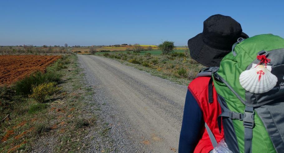 El Camino de Santiago regresa seguro el 1 de julio