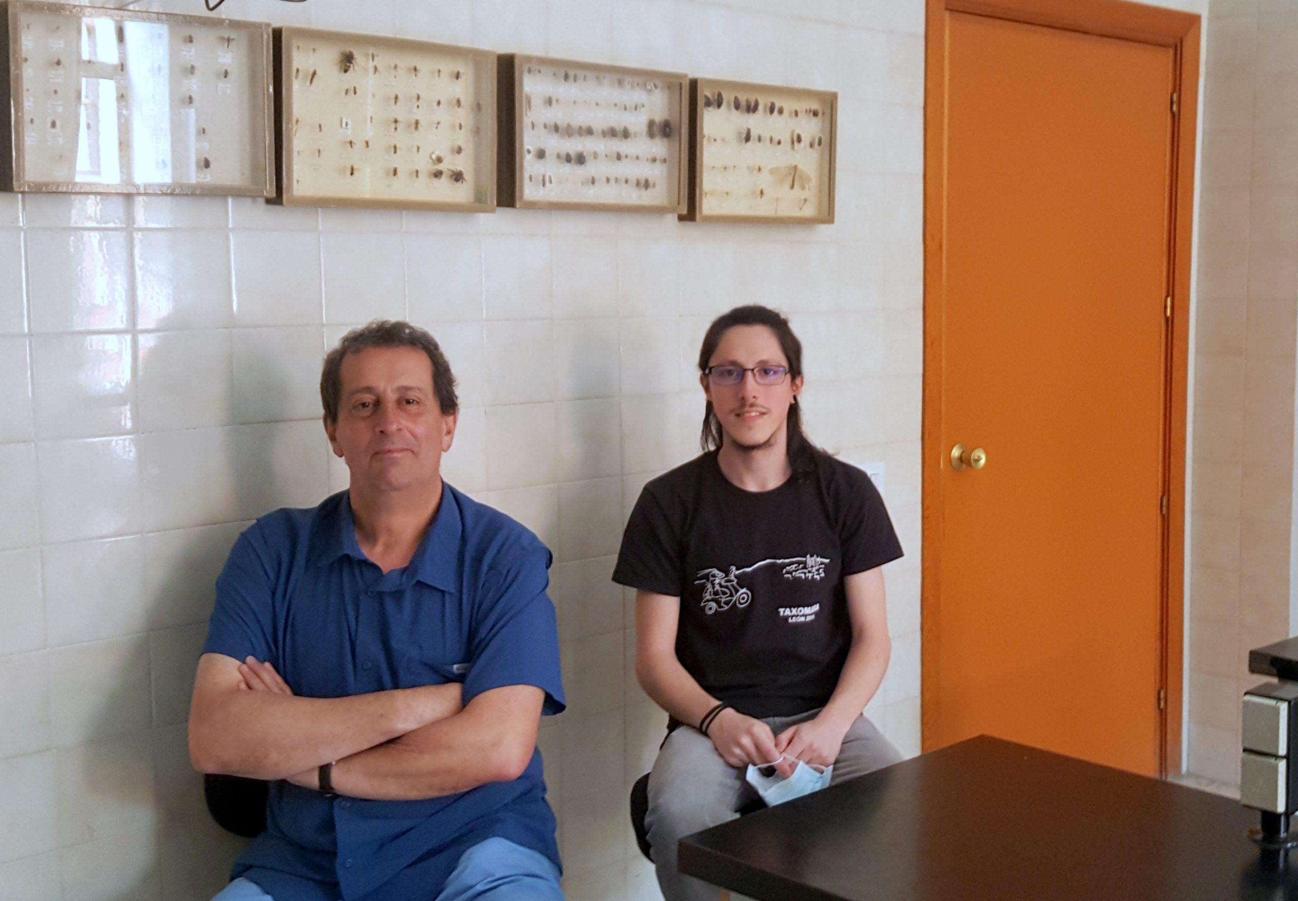 La Universidad de León identifica un insecto causante de alergias