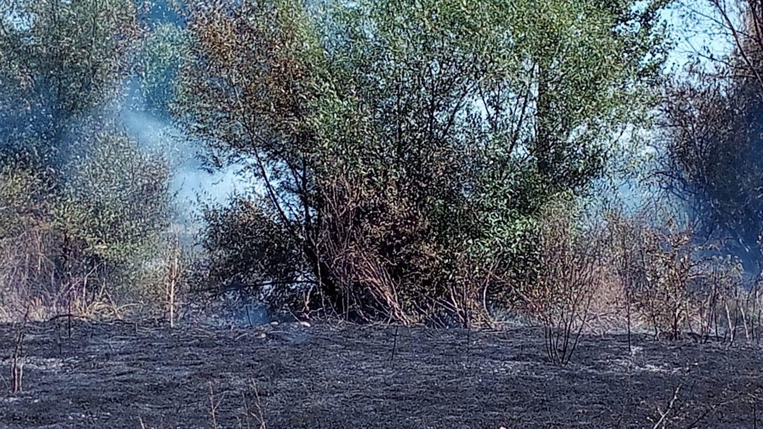 incendio en Vega de Infanzones