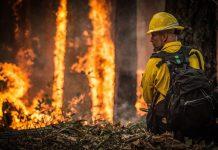 tres incendios azotan la provincia de león