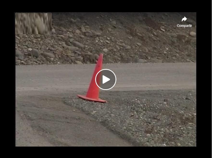 vídeo oso asturiano trabajos en carretera