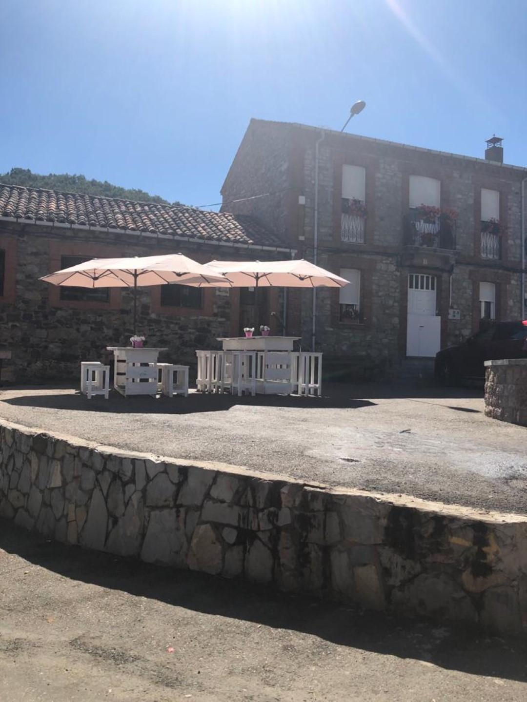 Coladilla_León