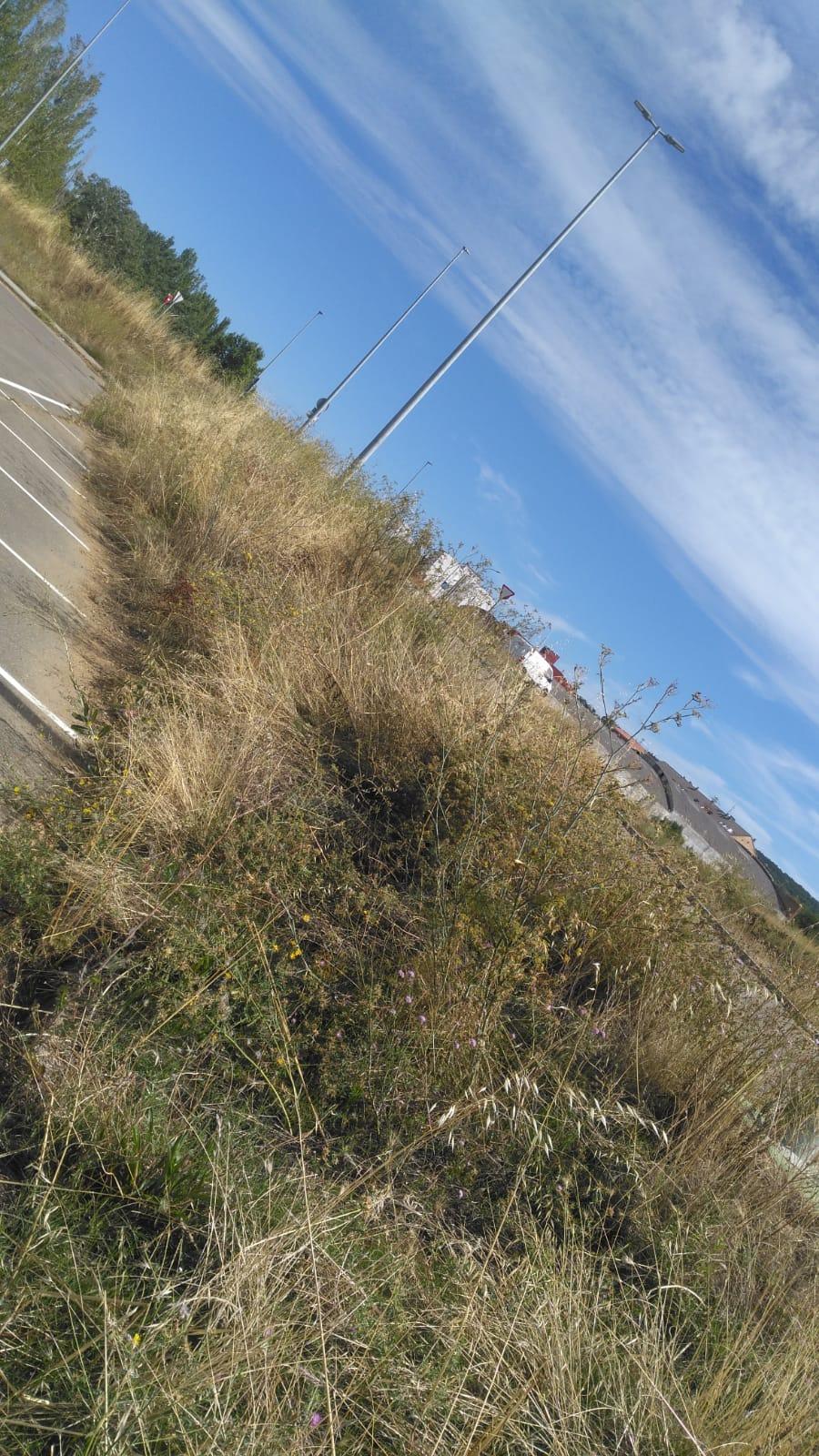 zona deportiva Puente Castro
