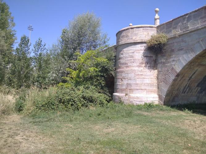 Puente de Puente Castro