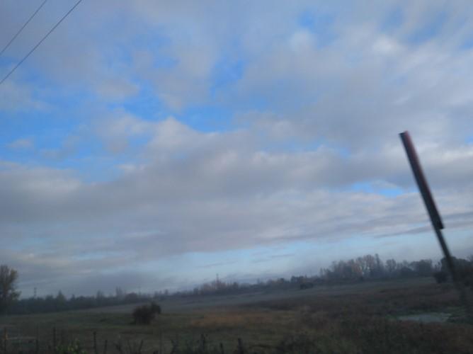 imagenes-niebla-leon