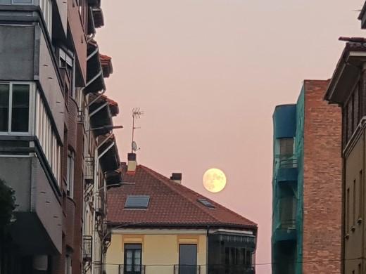 luna azul noche halloween león