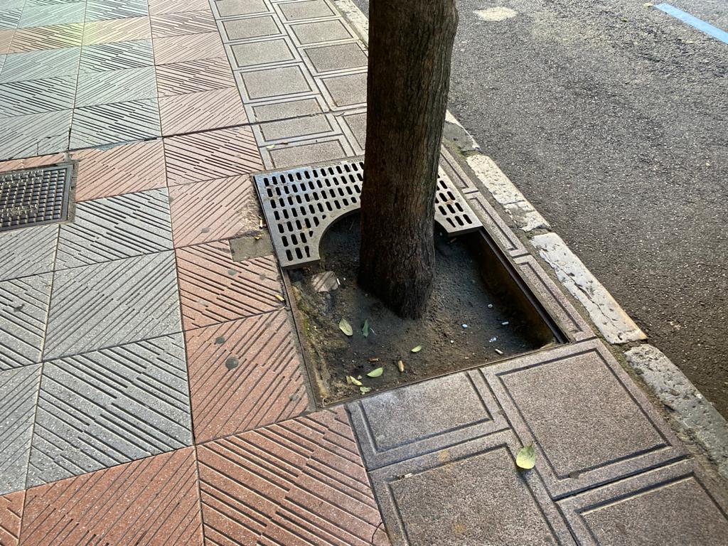 estado calles de León