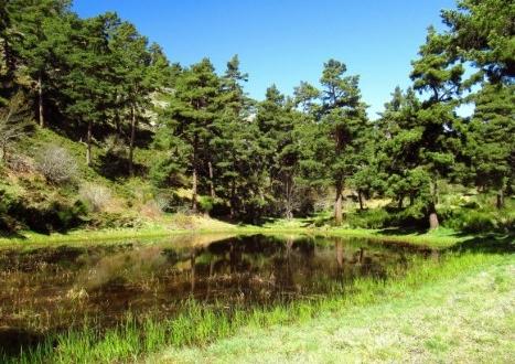 sulvayu una laguna en piedrafita de babia