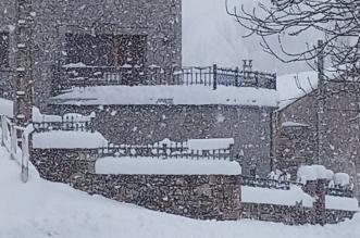 nevada-leon