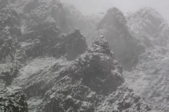 niebla León