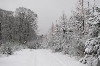 nieve-300-leon