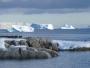 nueva antártida