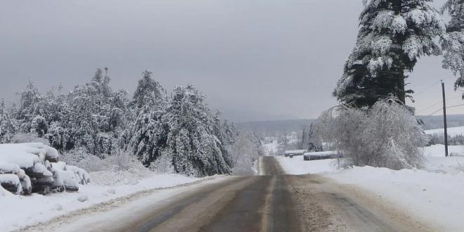 plan-nevada