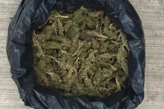 incautado-marihuana-baneza