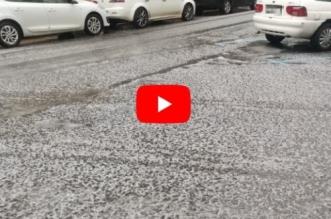 video tormenta granizo leon (4)