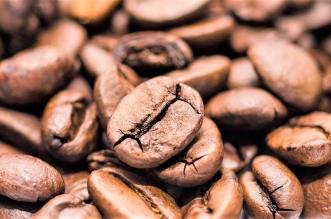 aprende hacer cafe gracias curso ule
