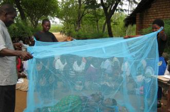 dia mundial malaria
