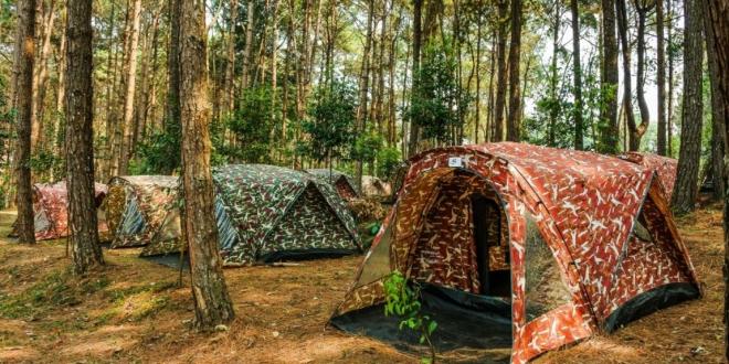 campamentos verano leon