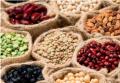 legumbres-luengo-nuevos-productos