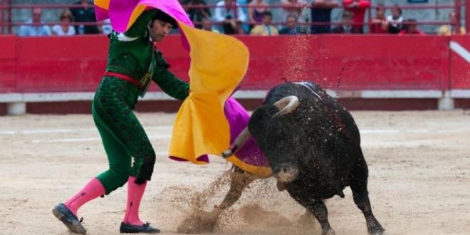 toros leon san juan