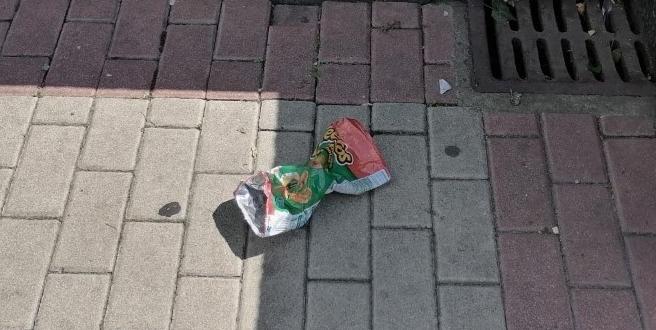 vergonzoso plaza inmaculada basura