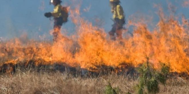 incendios leon altas temperaturas-Digital de León