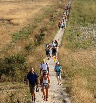 camino de santiago visitas julio- Digital de León
