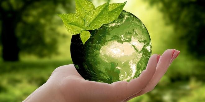 aplicaciones vida sostenible-Digital de León