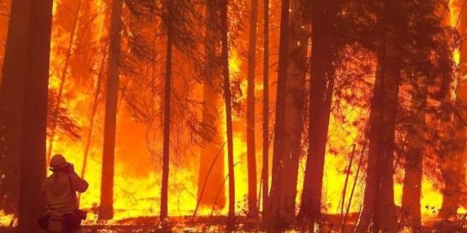 investigado provocar incendio leon-Digital de León