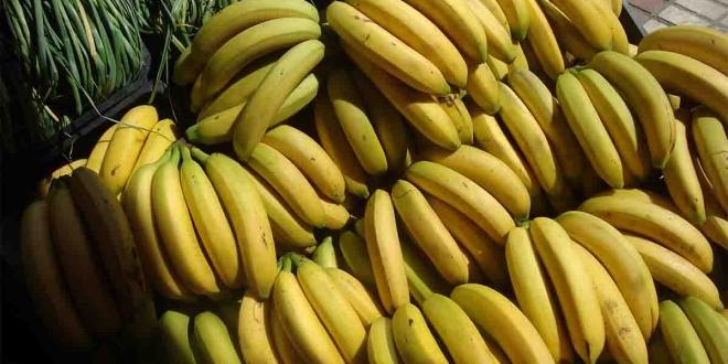 platano de canarias banana-Digital de León