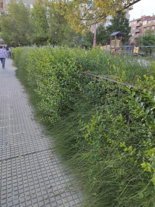 mantenimiento jardines leon-Digital de León