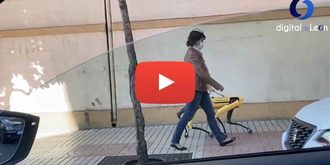 video viral perro robot leon-Digital de León